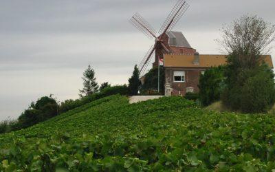 Francia 2003